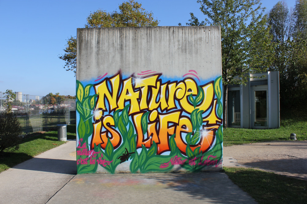 Peinture - S735 - Street art-graffiti - Tous niveaux