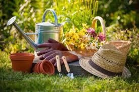 Jardinage - S760 - Adultes