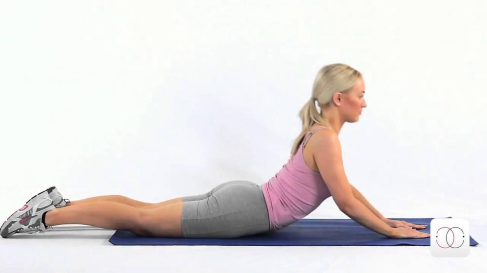 Activités physiques en Intérieur - S895 - Abdos-dos-stretching* - Tous niveaux