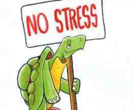 Equilibre et relaxation - N312 - Sorties méditatives - Tous niveaux