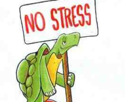 Equilibre et relaxation - N313 - Sorties méditatives - Tous niveaux